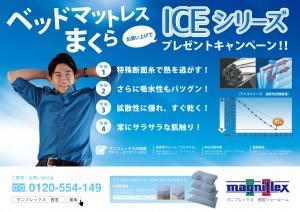 ICE_siries